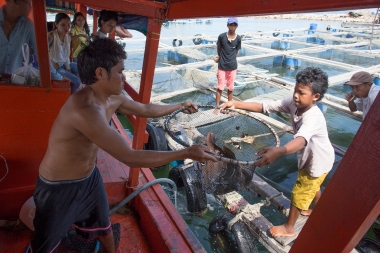 The boat made a stop delivering live fish to a fish farm.