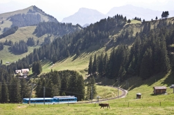 The Vitznau-Rigi-Bahn traditionally used red cars, while the Goldau-Bahn's colour was blue. Today both lines are run by the same company, but they keep the traditional colours of the two routes.