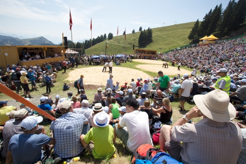 One of the big events of the year is the Rigi Schwingen event. Several thousand people turn up to see a typical Swiss variety of wrestling. We did not have the chance to go this year, but we have been there earlier.