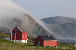We had glimpses of sunshine, but very soon the house was again covered in mist.