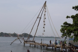 The hanging counterweights help pull them up again. There is no price for guessing that this way of fishing was introduced to Kerala by the Chinese!