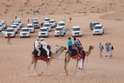 There were also a handful of camels we could hire for a ride. We didn't.