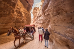 The Siq is also a highway for horses and carts. They come at high speed, and we were very much instructed by our guide to get out of their way when we heard them coming.