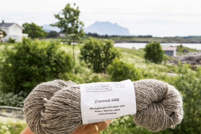 The Doenna yarn.