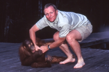 Flashback! DHH, anno 1997, playfighting with a teenage orangutan at an animal rescue center in Borneo. 22 years later, in Malaysia, we got to meet these gentle cousins of our's one more time!