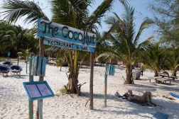 Our friend Robbie and his resort do not have the beach totally to themselves. There are some 4 or 5 smaller resorts and restaurants on the same strip of sand. The nearest neighbor is the Cocohut Restaurant and Bar.