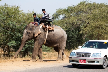 There are a number of transport options available in Myanmar - not all of them motorized.