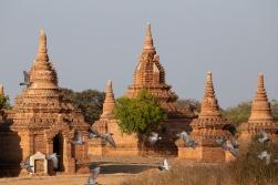 8_54_80335_Myanmar_2020
