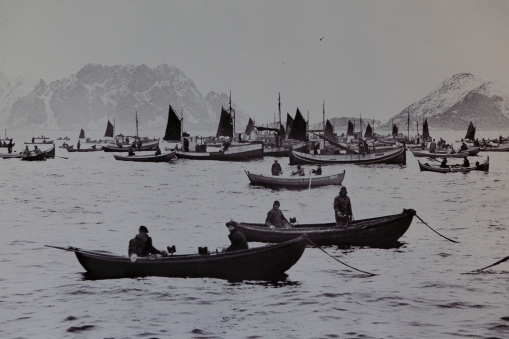 Vintage pictures from the Lofoten winter fisheries.