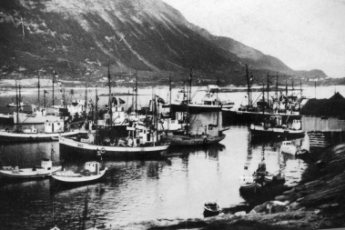 DHH's grandfather took part of the Lofoten winter fisheries for 50 years. His boat is the grey vessel at the centre of this picture, taken ca 1935.