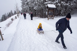 Going hiking with The Grandson on a sledge.