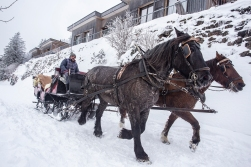 Demir is our local taxi driver. He runs a small electric bus when the road is bare and converts to horses when the snow starts falling.
